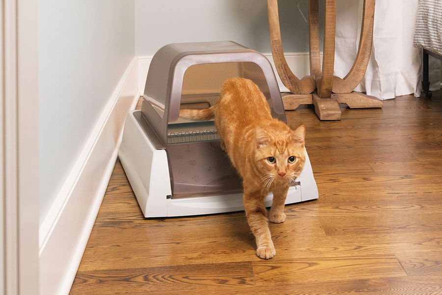 self-cleaning litter tray