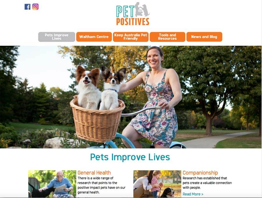 pet positives pet industry blog