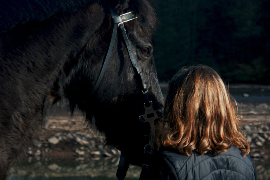 woman standing next to black horse, equine vet
