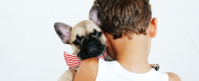 Young boy holding French bulldog