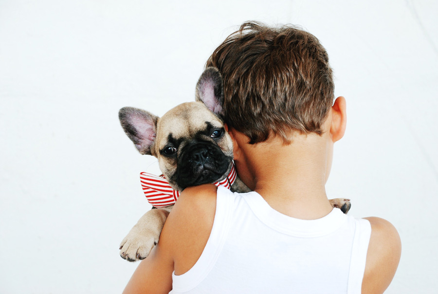 Young boy holding French bulldog