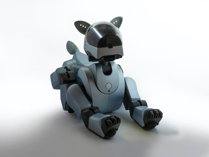 robot dog, therapy dogs