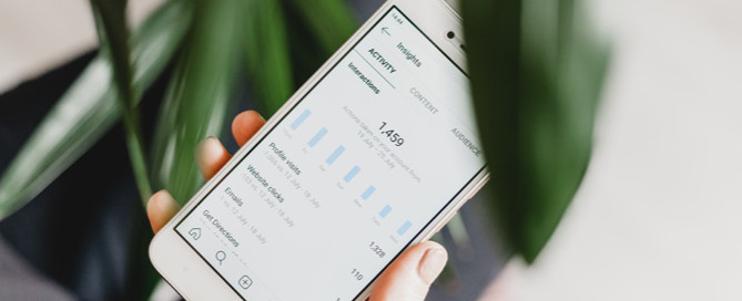 Instagram insights on phone, instagram for pet business
