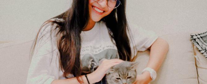 Young woman petting grey cat, vet nurse, pet care